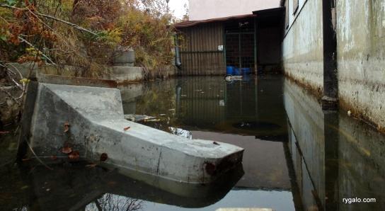 wody na basenie nie brakuje