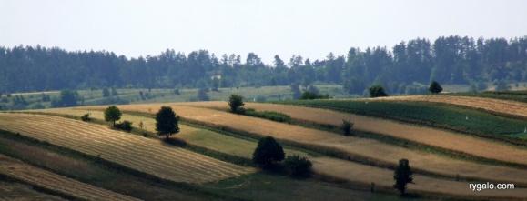 2006_0809roztocze0018