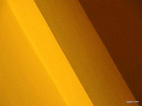żółtości