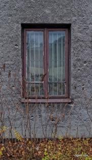 6-SAM_5403_okna