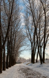 pierwszy śnieżny dzień