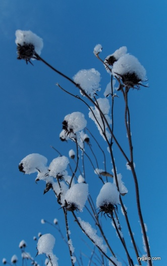 śnieżne detale