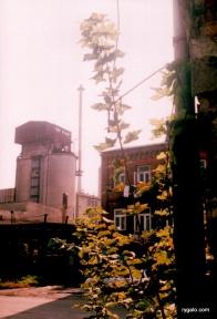 resztki huty