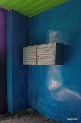P8130062_kolorowe podwórka-001