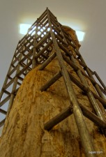 rzeźby Grzegorza Witka