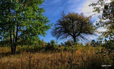 jesień w Ossowie