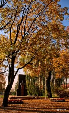 jesienny Wołomin