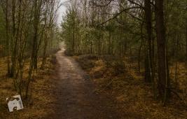 rezerwat Grabicz