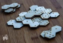 domino-6699