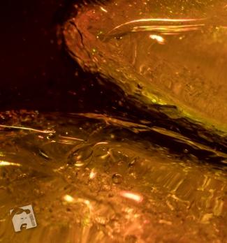 element basniowy-8596