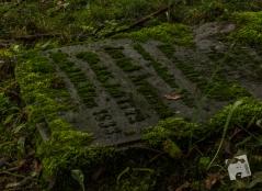 kirkut w Szcztnie-1186