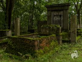 kirkut w Szcztnie-1187