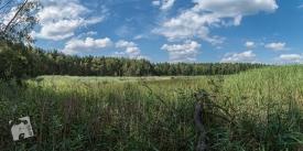 rezerwat Śliże 2-