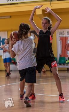 basketball-2942