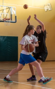 basketball-2948