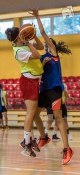 basketball-2978
