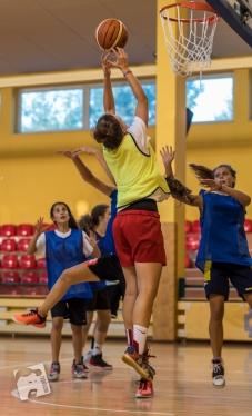 basketball-2979