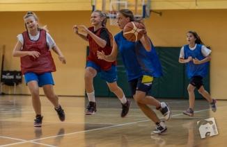 basketball-3003