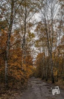 grabicz-jesienia-5035