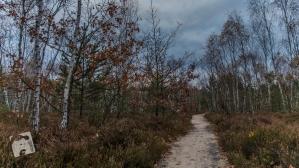 grabicz-jesienia-5070