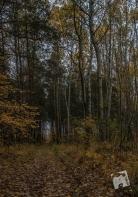 grabicz-jesienia-5105