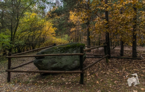 grabicz-jesienia-5126