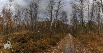 grabicz-jesienia2