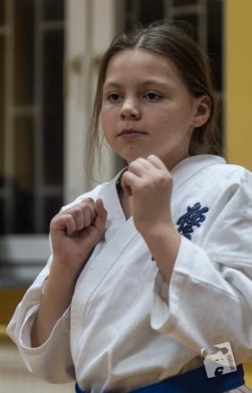 karate-kyokushin-6458