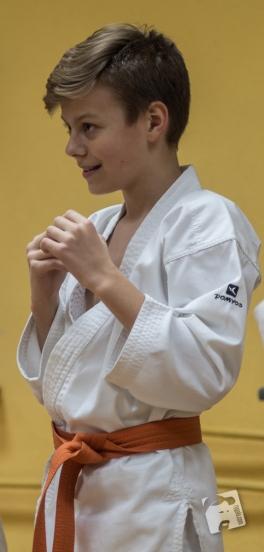 karate-kyokushin-6459
