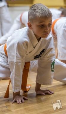 karate-kyokushin-6466