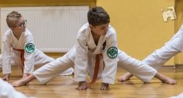 karate-kyokushin-6467