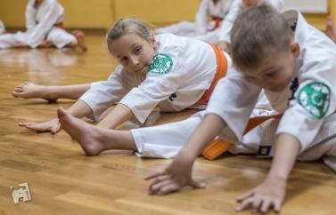 karate-kyokushin-6478