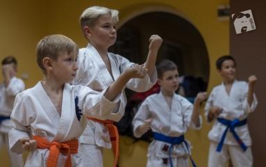karate-kyokushin-6487