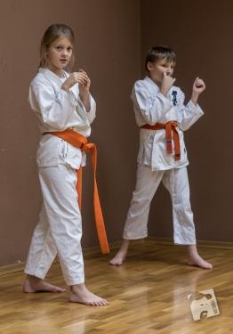 karate-kyokushin-6503