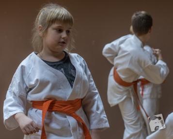 karate-kyokushin-6557