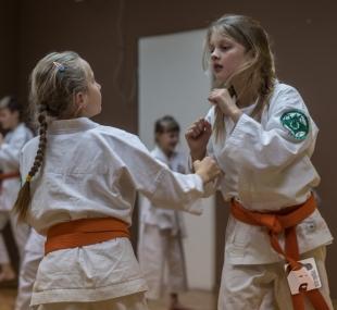 karate-kyokushin-6566
