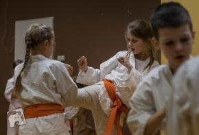 karate-kyokushin-6570
