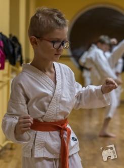 karate-kyokushin-6573