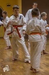 karate-kyokushin-6583
