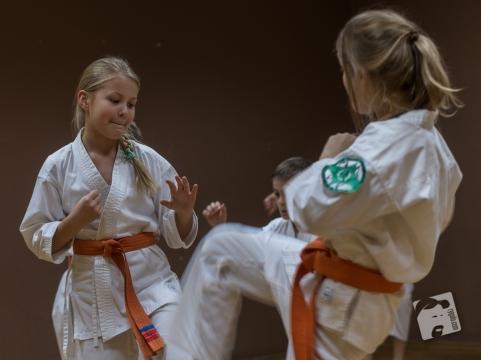 karate-kyokushin-6598