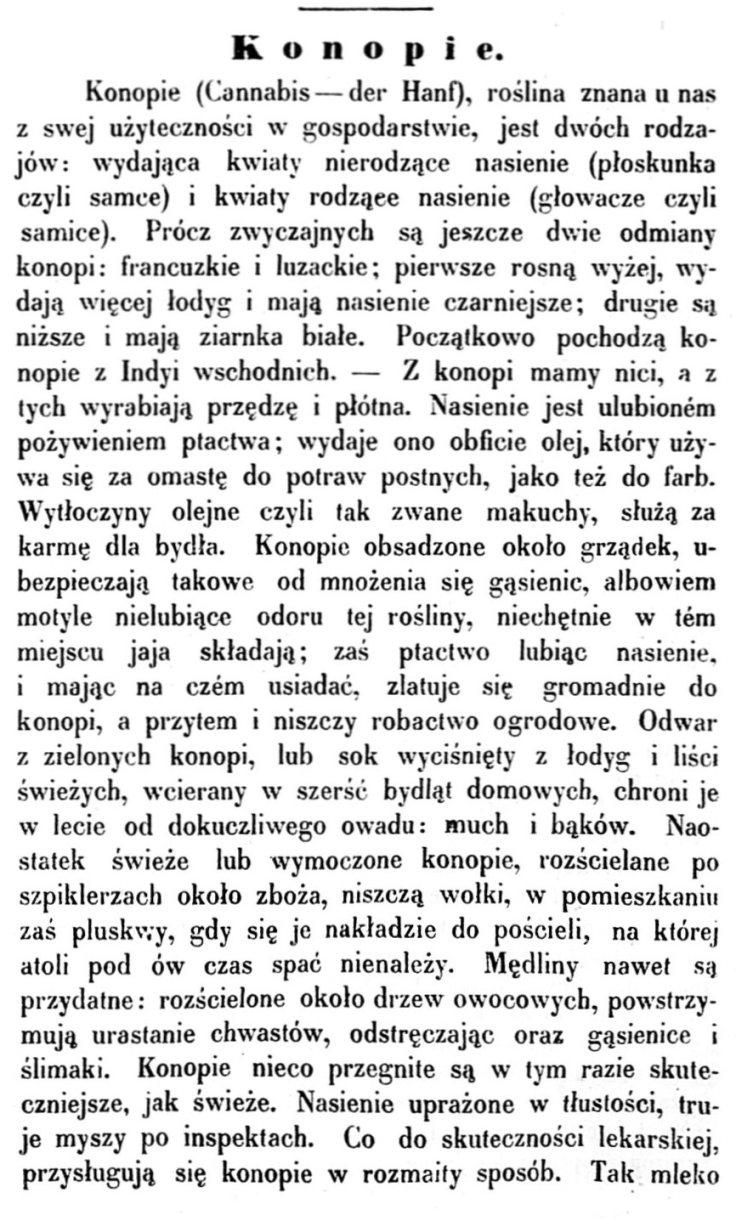 1856-przyjaciel-domowy-pismo-dla-ludu-r-6-nr-18-3-maja-1856