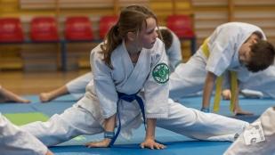 karate-kyokushin-9107