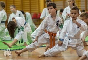 karate-kyokushin-9113