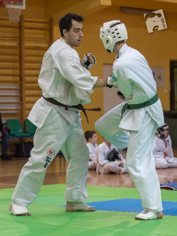karate-kyokushin-9151