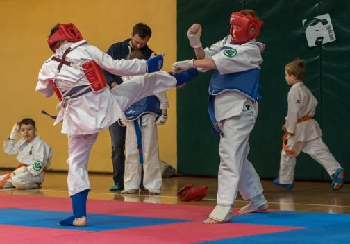 karate-kyokushin-9152