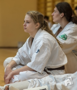 karate-kyokushin-9155