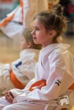 karate-kyokushin-9199