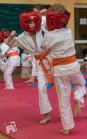 karate-kyokushin-9206