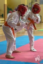 karate-kyokushin-9210