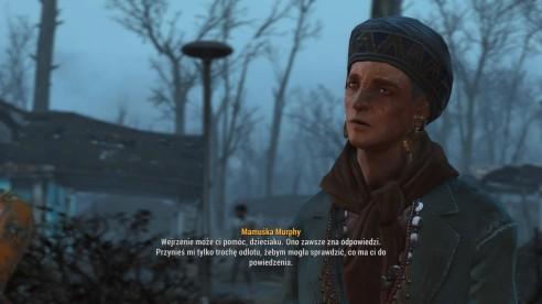 Fallout 4_20170118134224